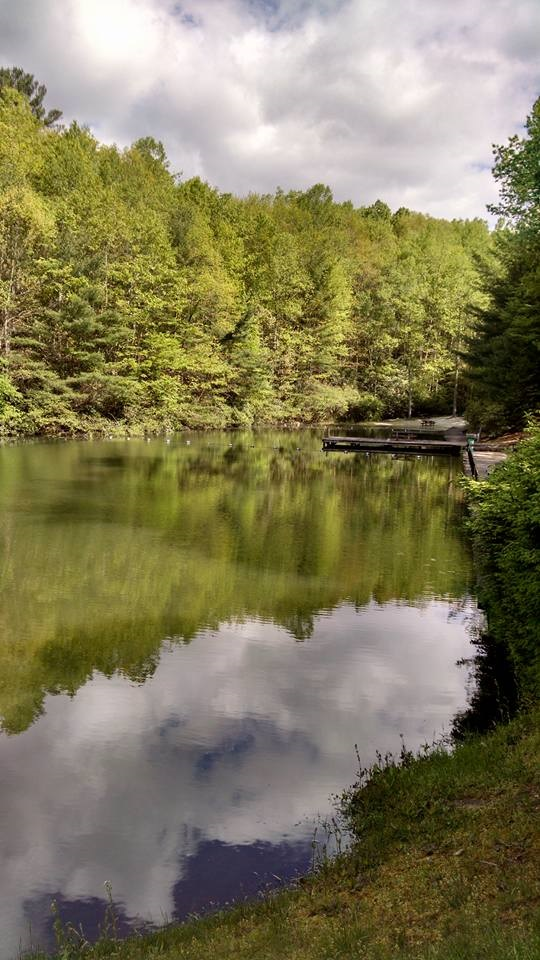 Bear den family campground cabins blue ridge parkway for Nc fishing regulations 2017