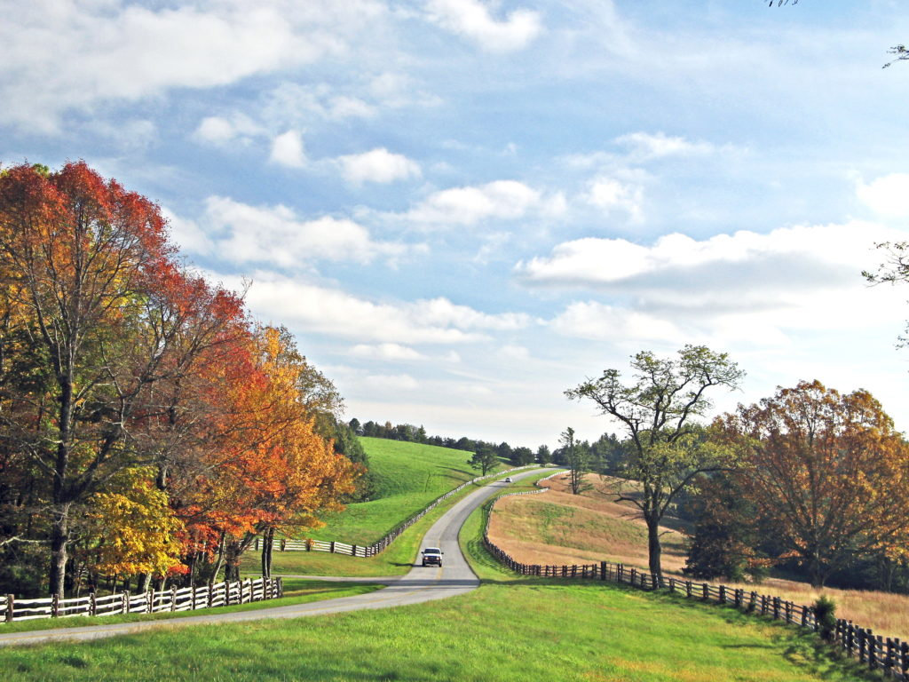 Blue Ridge Parkway at Doughton Park, Wilkes, NC