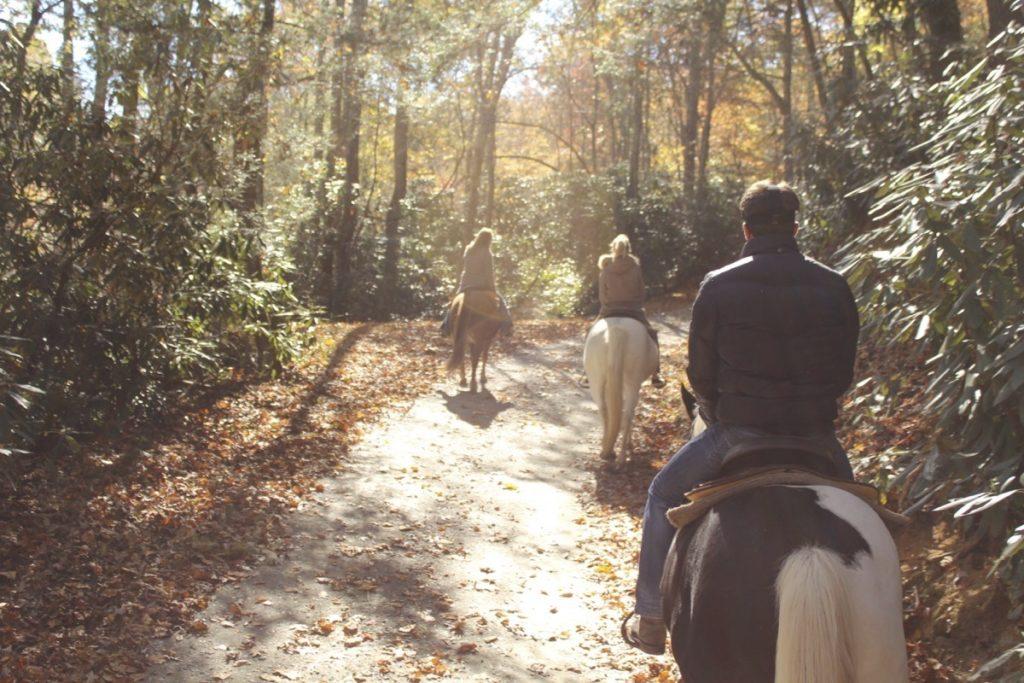 Springmaid Mountain Horseback Riding
