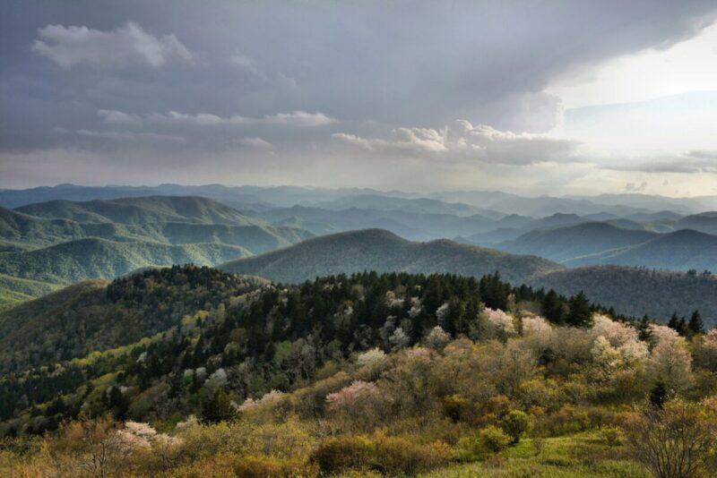 Blue Ridge Parkway Pisgah Region: Cowee Overlook