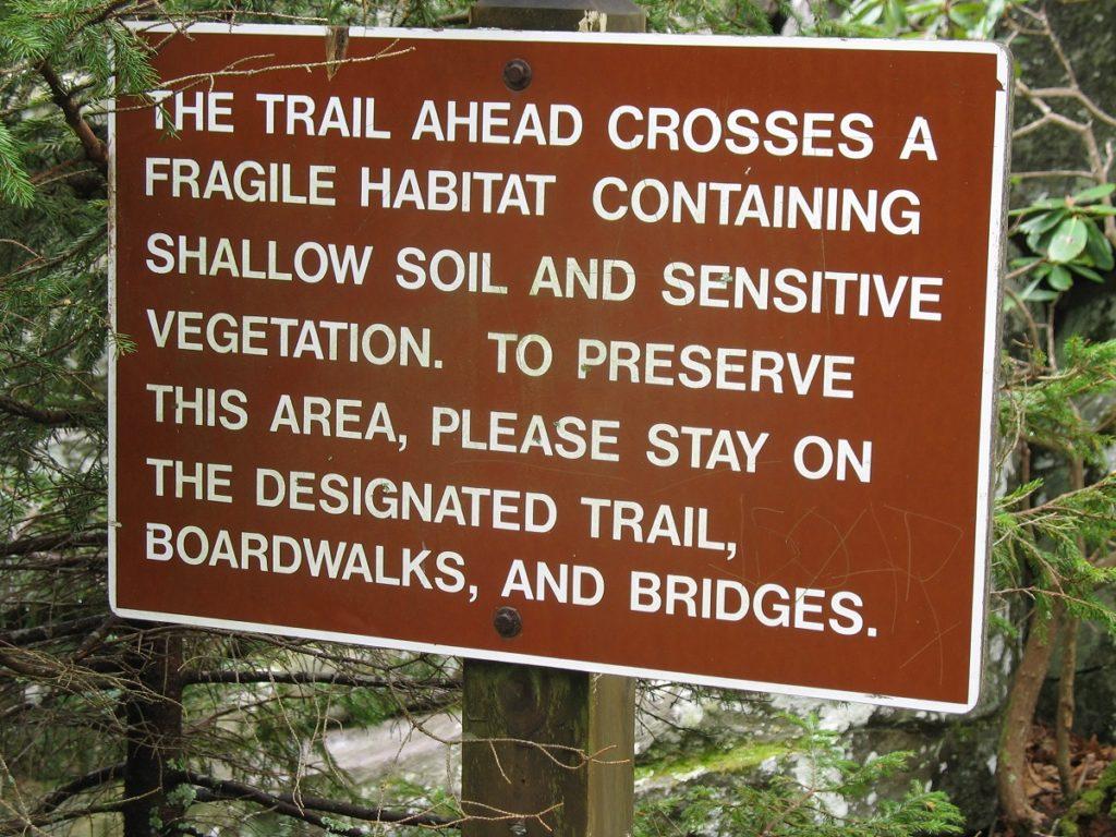Hiking - Blue Ridge Parkway
