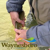 Waynesboro, VA