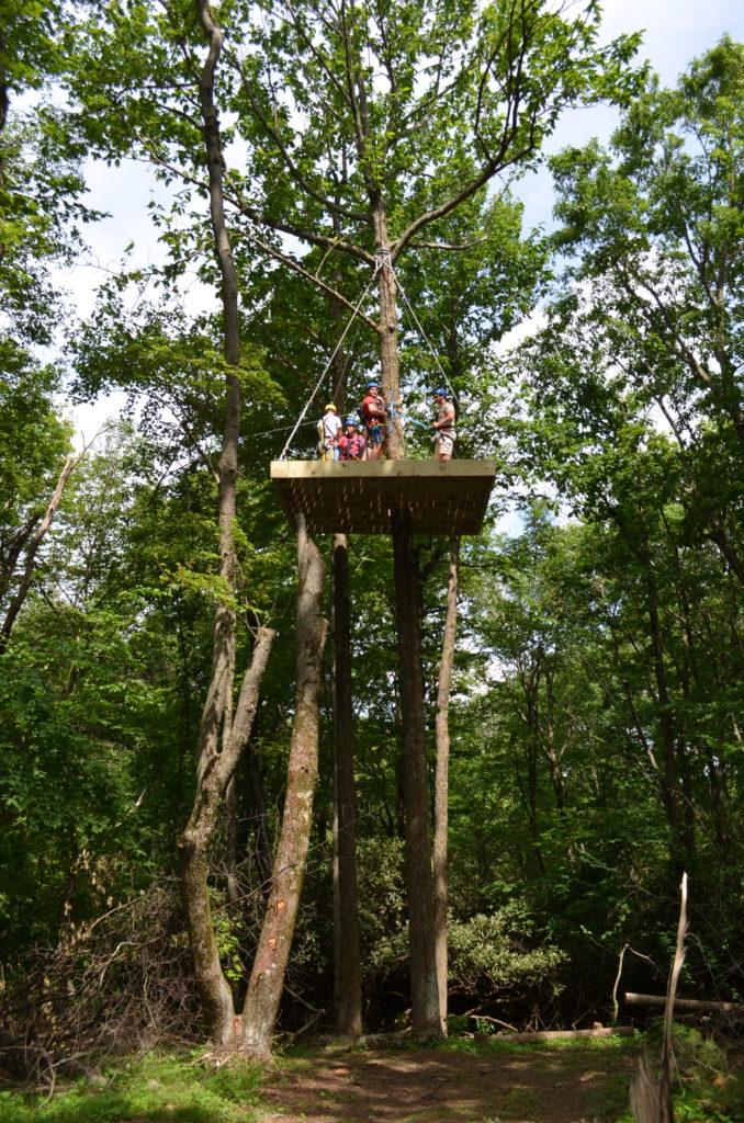 Buffalo Mountain Ziplines Treetop