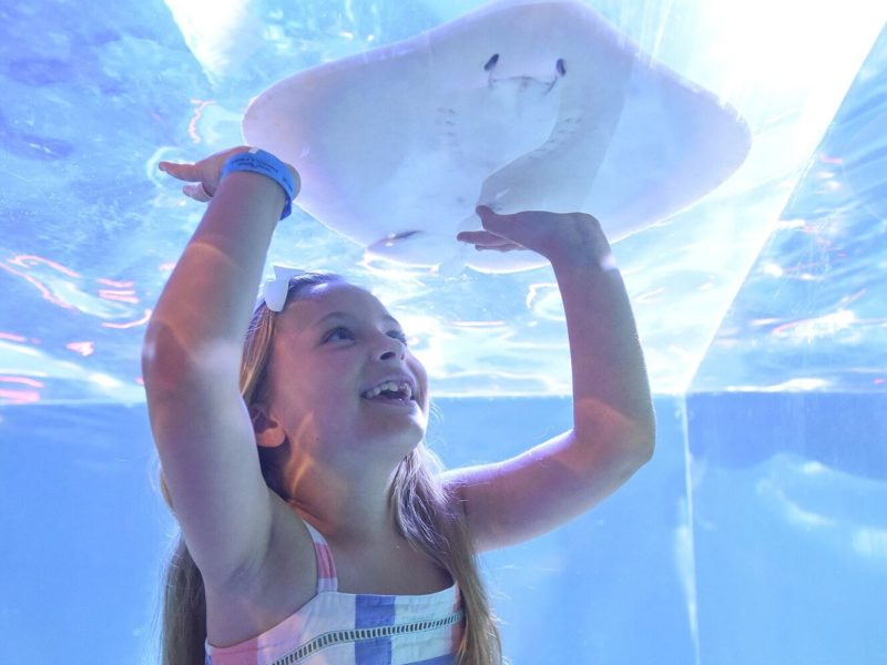 Child with Ray at Seaquest