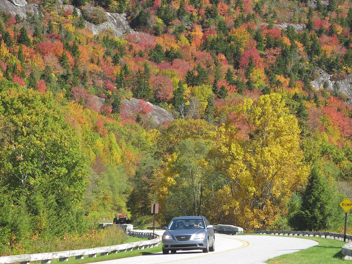 BRP in Fall at U.S. 221 by William A. Bake