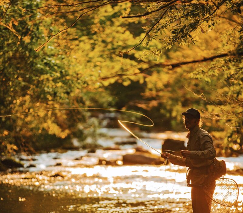 Man Fly Fishing on a river in McDowell County