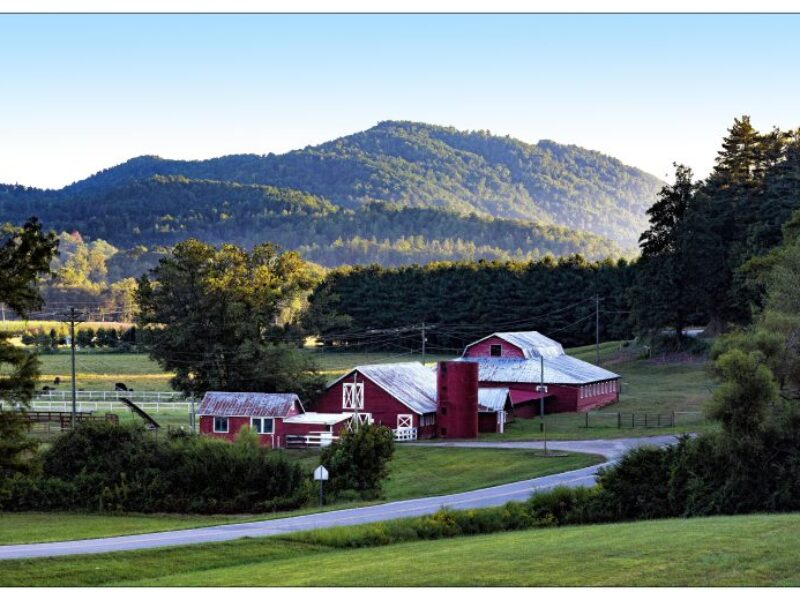 A Caldwell County farm in front of forested mountain peaks.